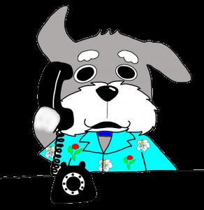 ダンディ電話